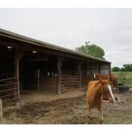 Ranch House and 25 Acres for Sale